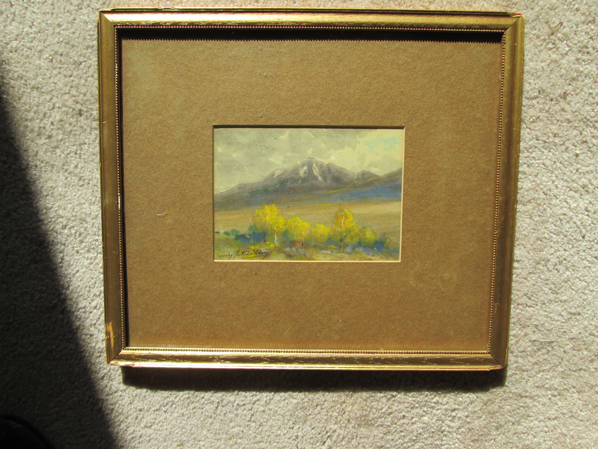 (Untitled) Mount Princeton, Colorado - Sold